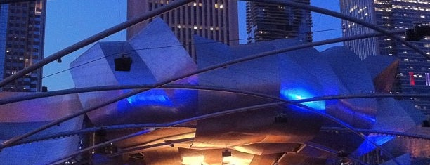 Grant Park Music Festival in Millennium Park is one of Culture in the Loop.