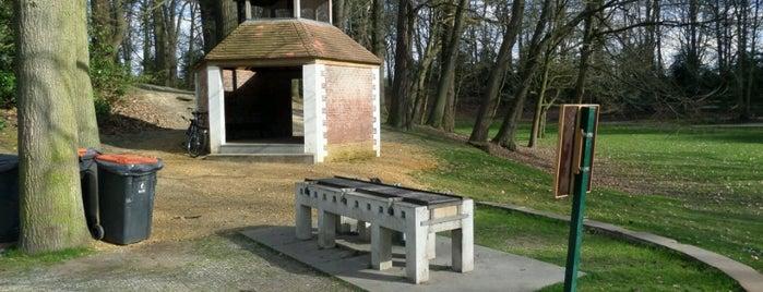 Antwerpse parken met BBQ