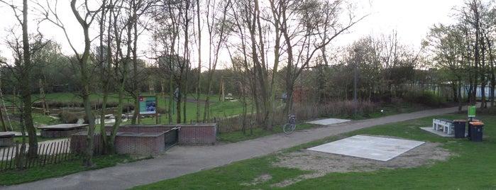 Bremweide is one of Antwerpse parken met BBQ.