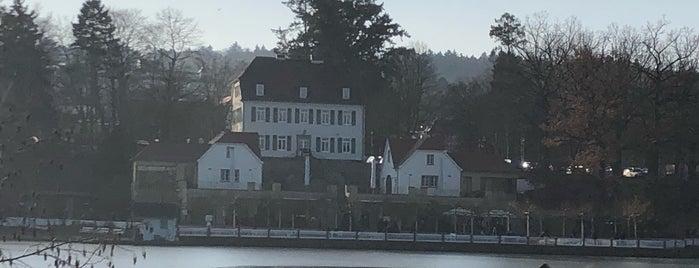Großer Teich is one of Bad Nauheim.