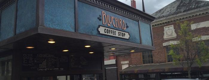 Burlington's Best Food & Drink