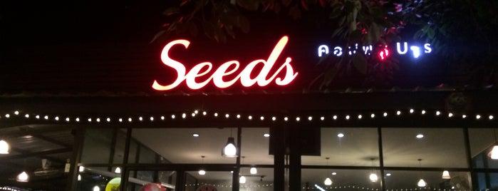 Seeds Coffee & Bar is one of ลำพูน, ลำปาง, แพร่, น่าน, อุตรดิตถ์.