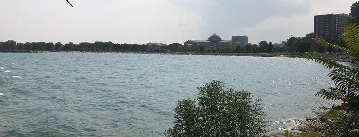 Lakefront Trail Burnham Park is one of Hyde Park.