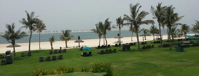 Jebel Ali Golf Resort is one of Основной состав.