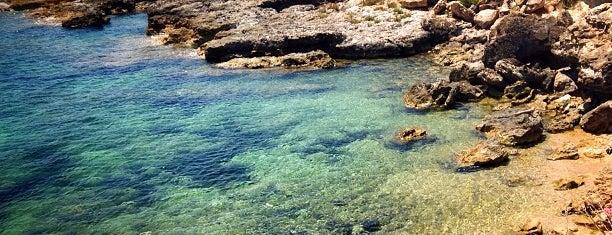 Riserva di Vendicari is one of South Italy.
