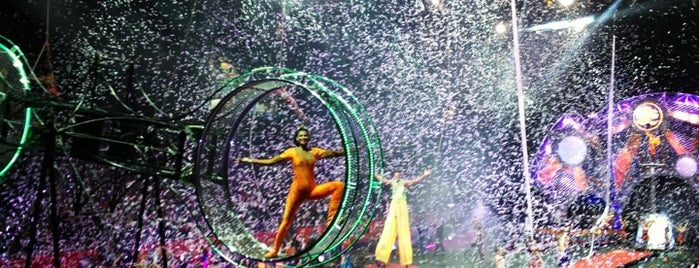 Ringling Bros. And Barnum & Bailey Circus is one of FUN.