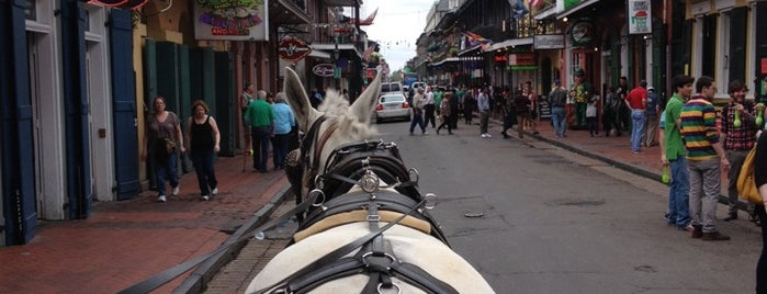 Royal Carriages is one of What we love about New Orleans.
