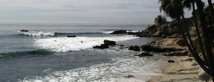 North Laguna Beach is one of Beach.