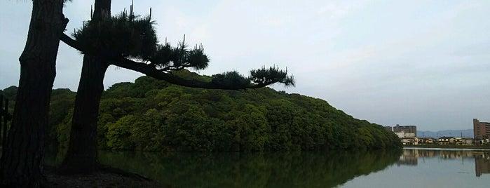 履中天皇 百舌鳥耳原南陵 (上石津ミサンザイ古墳) is one of 天皇陵.