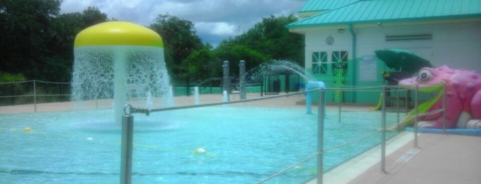 Sulphur Springs Pool is one of Things to do in Tampa Bay.