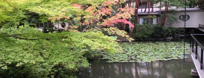 辰口温泉 まつさき is one of Hotel.