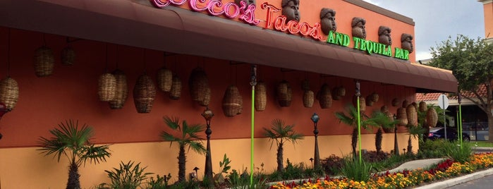 Rocco's Tacos and Tequila Bar is one of Dining in Orlando, Florida.
