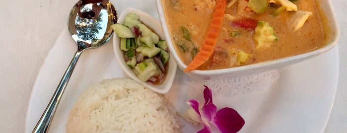 Orchid Thai Cuisine is one of Favorites.