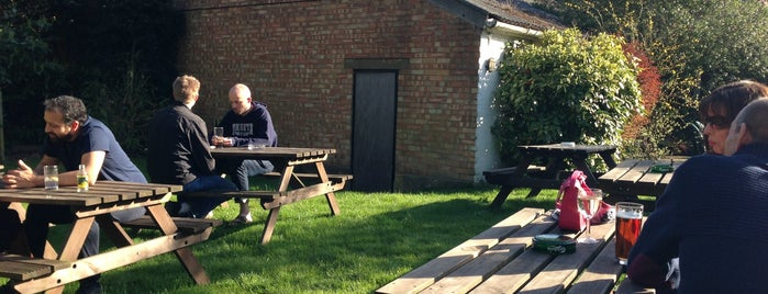 Oddfellows Arms is one of London's Best Beer Gardens.