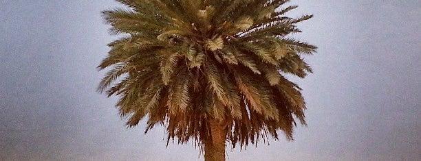 وسط الصحراء is one of أماكن جميلة حول العالم.