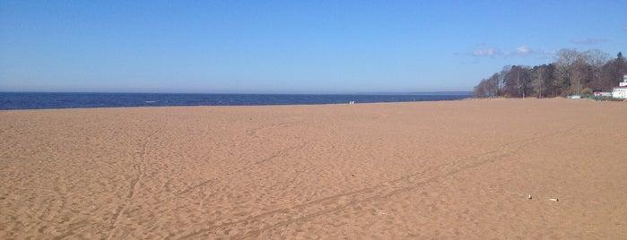 Пляж санатория «Северная Ривьера» is one of Питер.