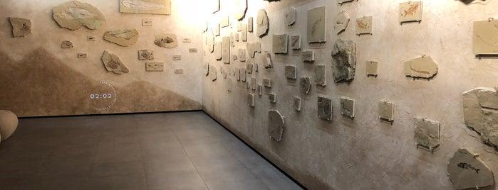 MIM Museum is one of Lebanon.