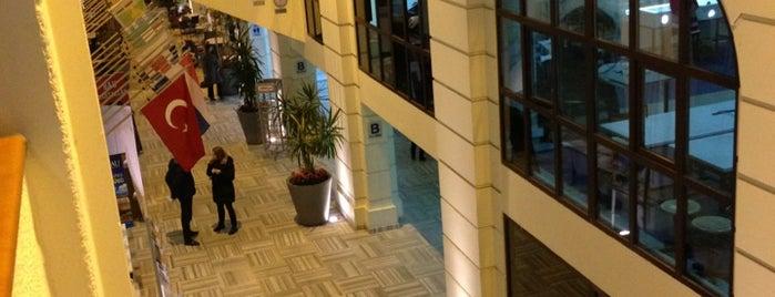 Bahçeşehir Üniversitesi Sosyal Bilimler Enstitüsü is one of 34 BIZ.