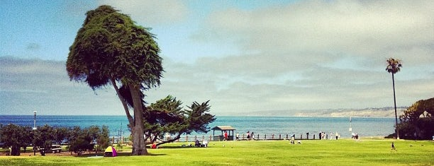 Ellen Browning Scripps Park is one of Places to take guests in San Diego.