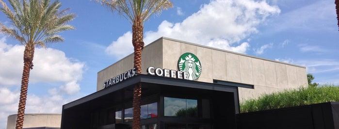 Starbucks is one of Disney World.