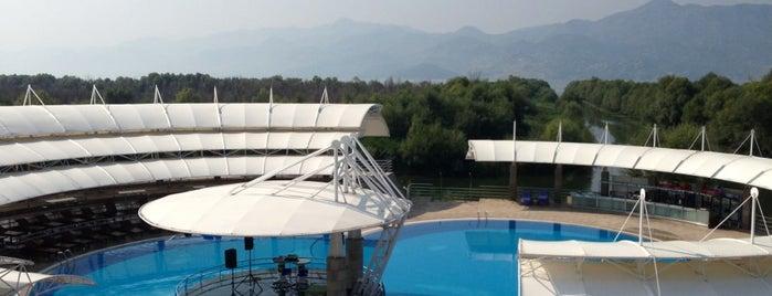 Plavnica Eco Resort is one of Montenegro.