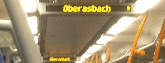 Single oberasbach