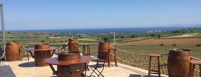 Barbare Vineyards is one of yas's choice.