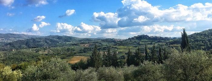 Azienda Agricola Panzanello is one of Chianti Classico Producers.
