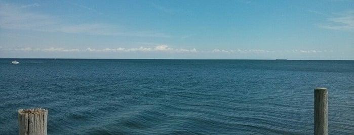 Jefferson Beach Marina is one of q.