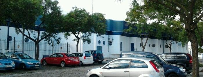 Área de Policía Local y Protección Civil is one of Dependencias municipales.