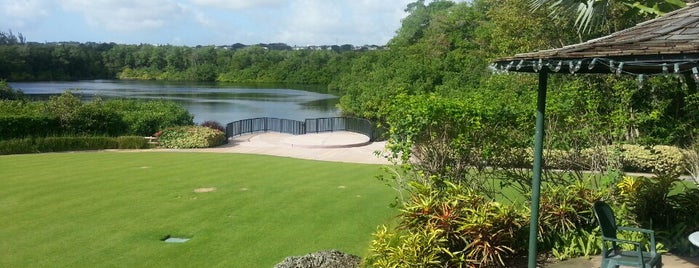 Graeme Hall Nature Sanctuary is one of Must visit places in Christ Church, Barbados.