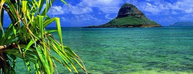 Hawaii is one of Must doooo.