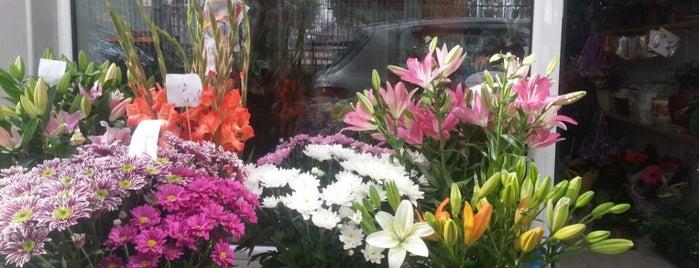 "Магазин за цветя ""Colourful"" is one of Favorite spots in Varna!."