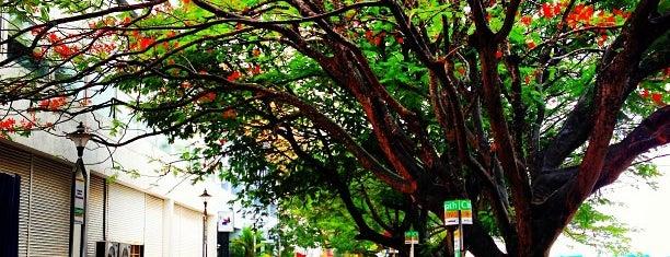 Guide to Cochin's best spots