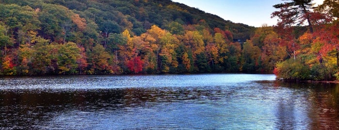 Bear Mountain State Park is one of NYC Dating Spots.