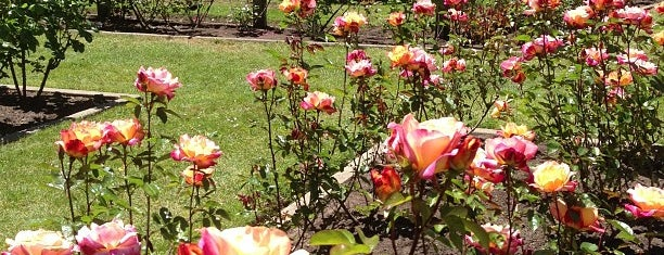 Rose Garden is one of Recreation/ outings.