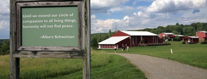 Farm Sanctuary is one of Ellen's Favorite Places.