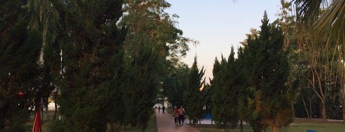 สวนสาธารณะศรีเมือง is one of น่านน่ะเด้!.
