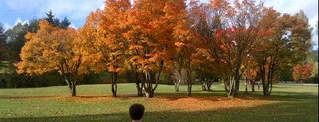 Queen Elizabeth Park is one of เที่ยว Vancouver, Canada.