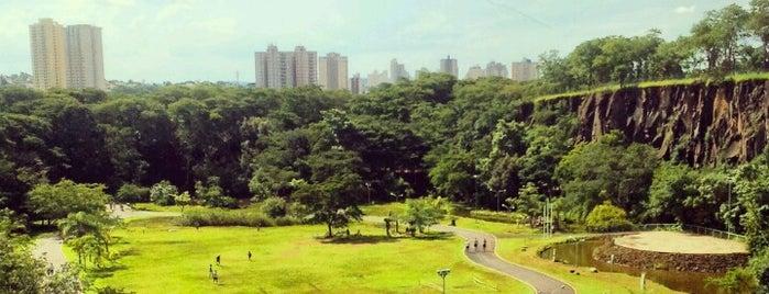 Parque Prefeito Luiz Roberto Jábali (Curupira) is one of Conhecer Ribeirão.