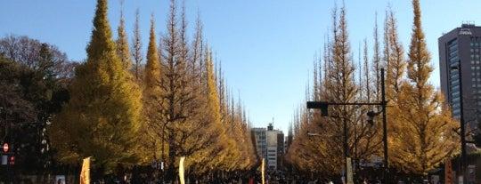 Meiji Jingu Gaien is one of Tokyo City Guide.