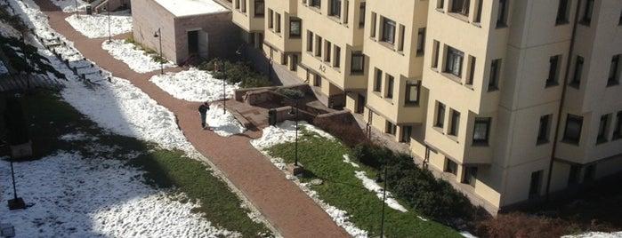 Koç Üniversitesi Batı Yurdu is one of Gokay.