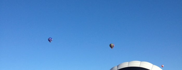 The Great Forest Park Balloon Race is one of Fave STL Metro Sites.