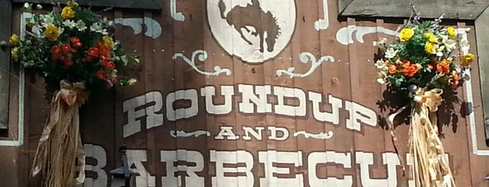 Big Thunder Ranch BBQ is one of Disneyland Fun!!!.