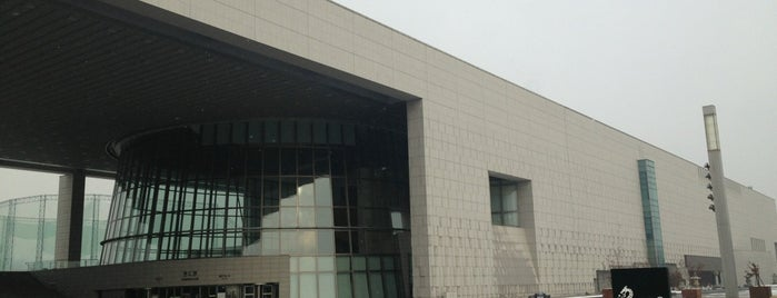 National Museum of Korea is one of Travel Guide to Seoul.