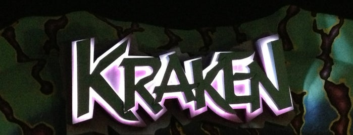 Kraken is one of Orlando's must visit!.