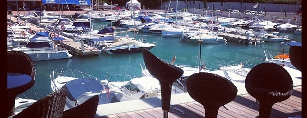 Port Adriano is one of All-time favorites in Spain.