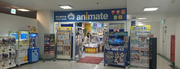 animate is one of ライブ、イベント会場.