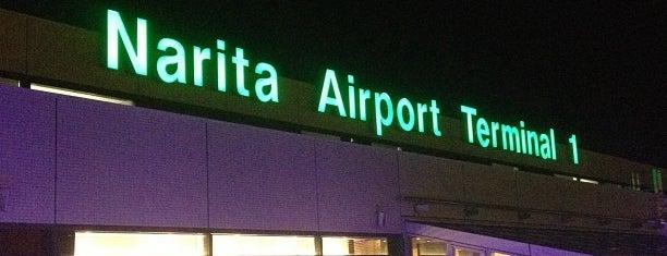 成田空港 第1ターミナル is one of World AirPort.