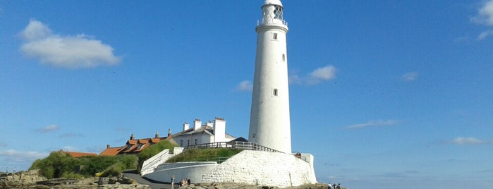 St Mary's Lighthouse is one of Northumberland nature reserves.